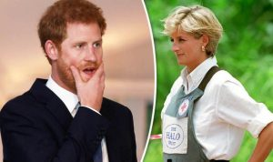 Prince Harry to continue his mother's crusade against landmines